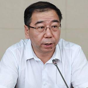 中国建筑装饰协会材料分会 秘书长 王岳飞