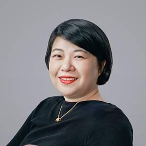 码隆科技 商务副总裁 王海鹰