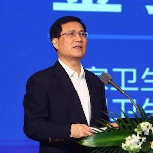中国卫生信息与健康医疗大数据学会  会长,原国家卫生计生委党组成员、副主任 金小桃