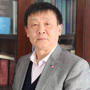 中国工程院 院士 石碧