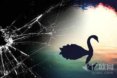 黑天鹅:为什么我们总是善于总结而非预测