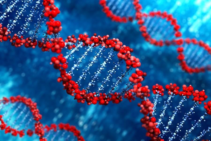 """拓普基因完成近亿元Pre-B轮融资,剑指女性肿瘤精准防治""""C位"""""""