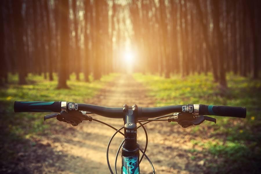 自行车,共享单车,自行车,王庆坨
