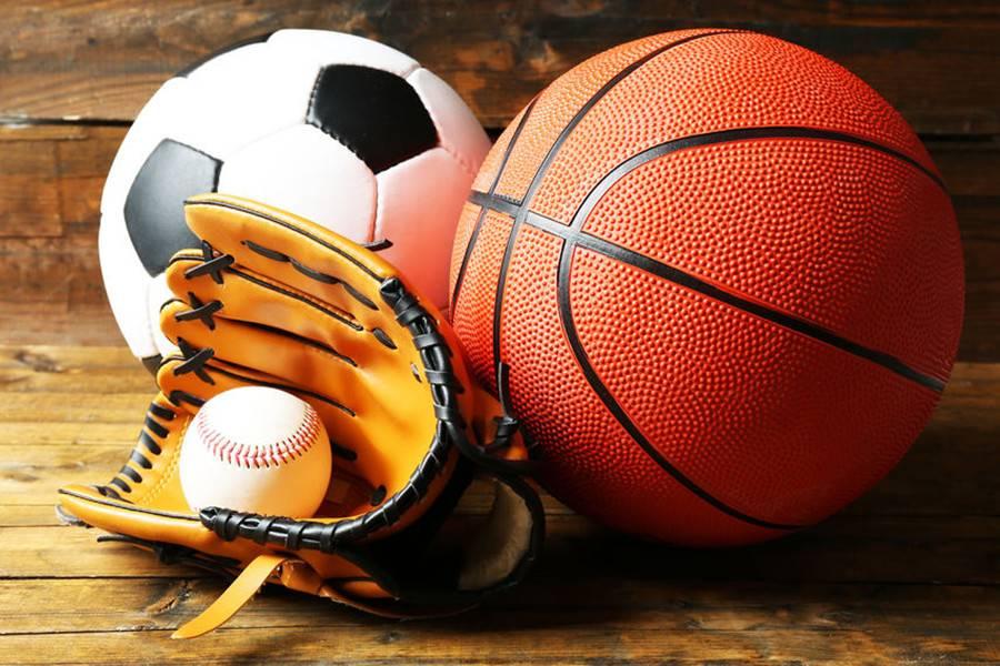 体育,体育培训,口碑,教学质量