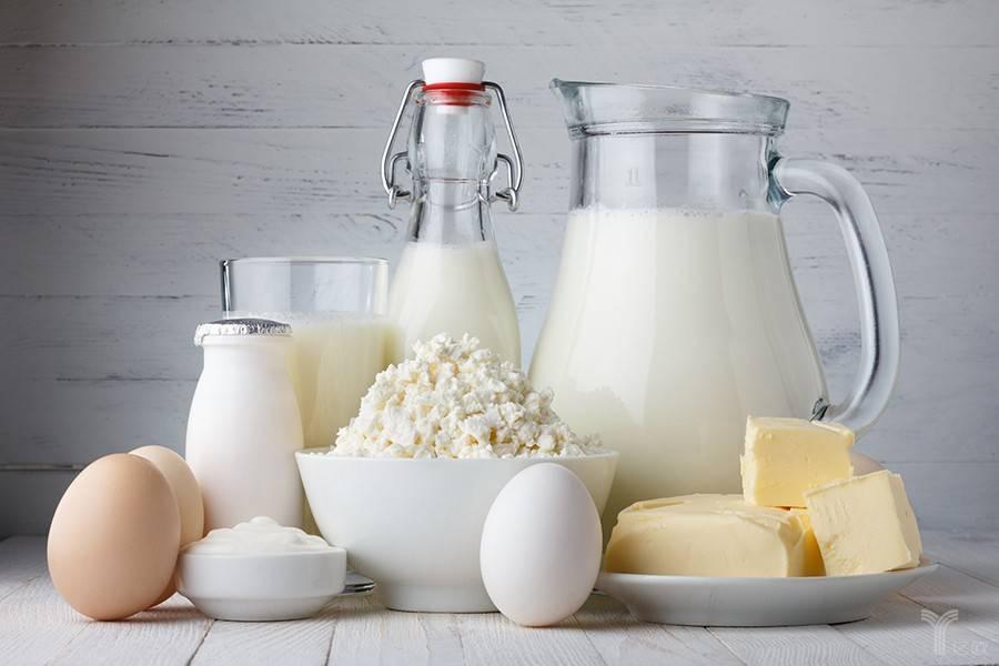 乳业,牛奶