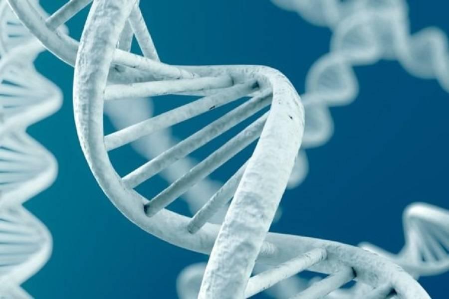 震惊!磁盘数据还能储存在你的DNA上?