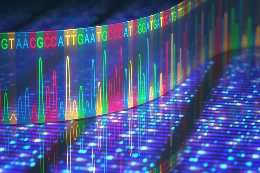 基因测序,基因科学,精准医学,风险预测