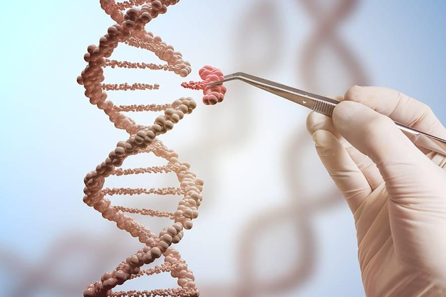 医疗,基因检测