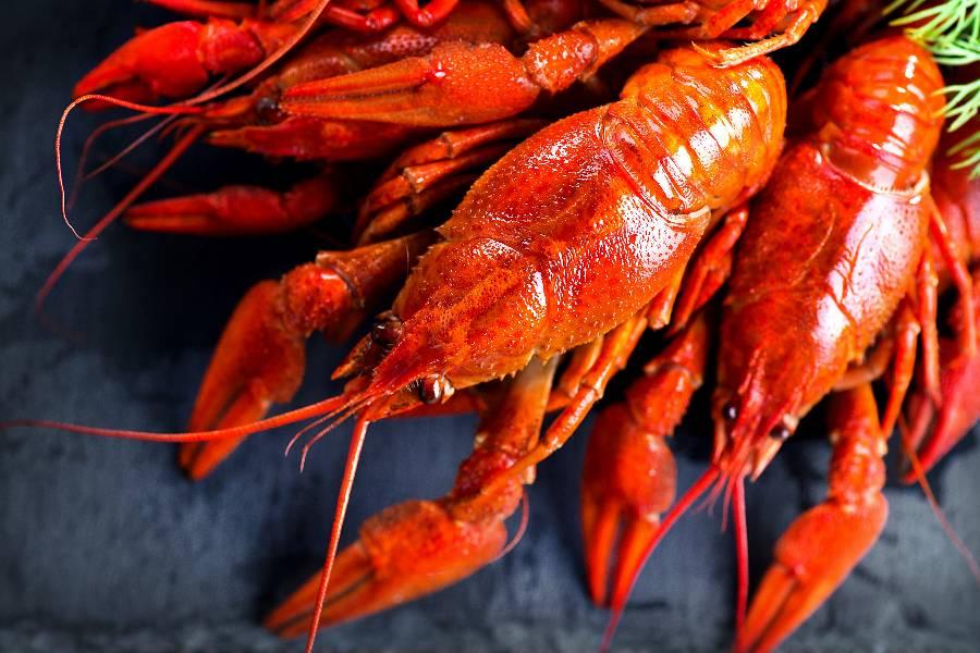 小龙虾,小龙虾,供应链