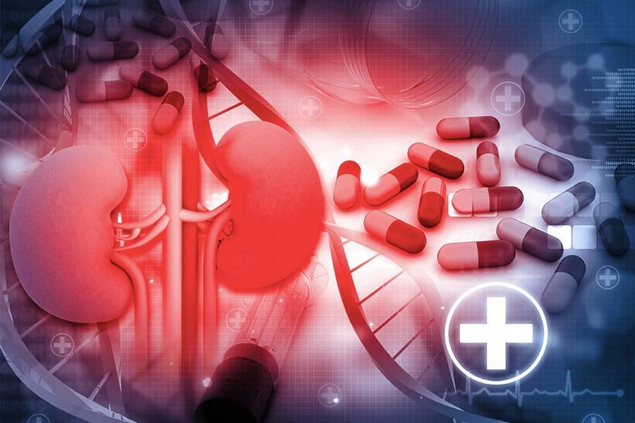 醫藥,新藥,腫瘤,抗體藥物