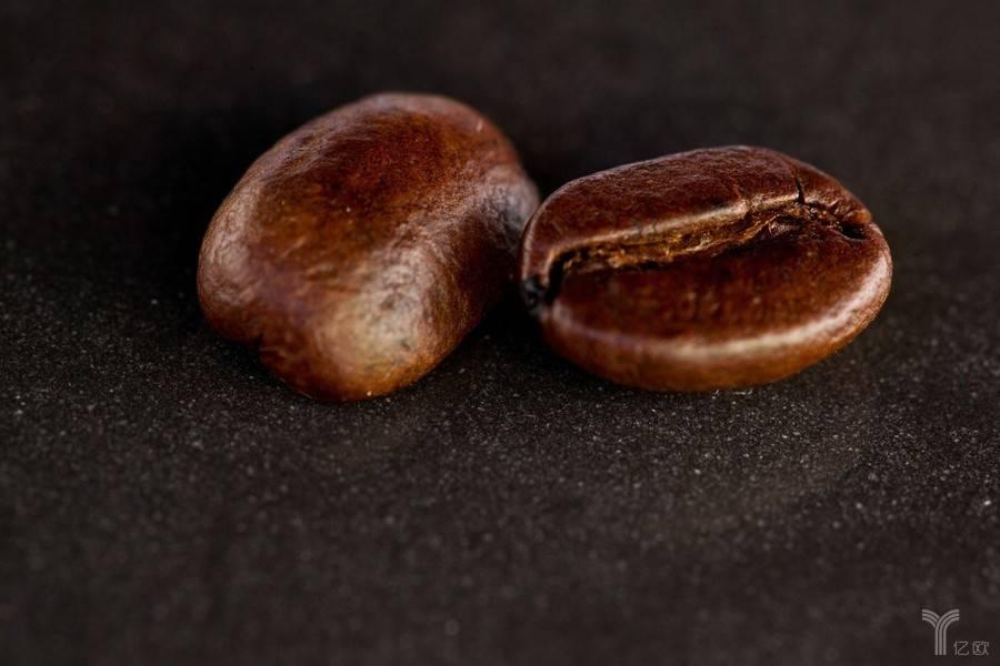朗然资本创始合伙人潘育新:如何看待咖啡新零售?