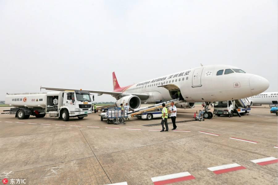 深圳航空,动物运输,航空运输,深圳航空,南航