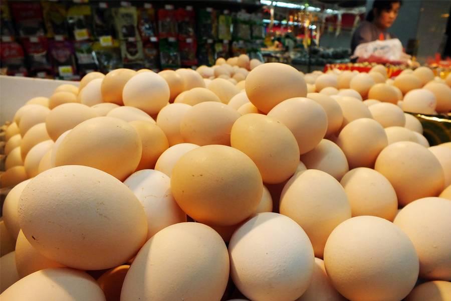 鸡蛋,鸡蛋,供应链,猪肉