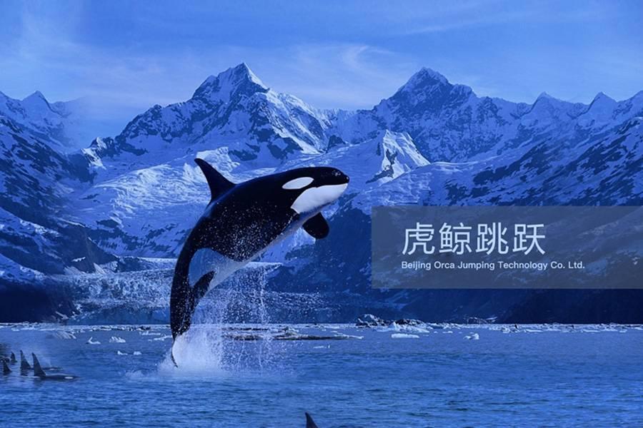 虎鲸跳跃完成300万美元Pre-A轮融资,用AI打破微信营销和销售黑箱