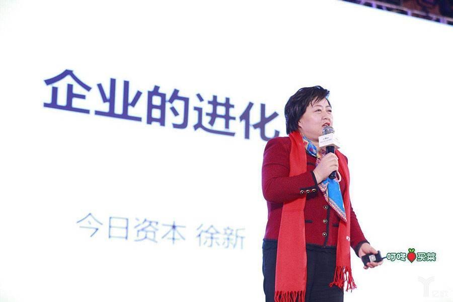 风投女王徐新:用户的懒惰是商业革命、技术创新最好的机会