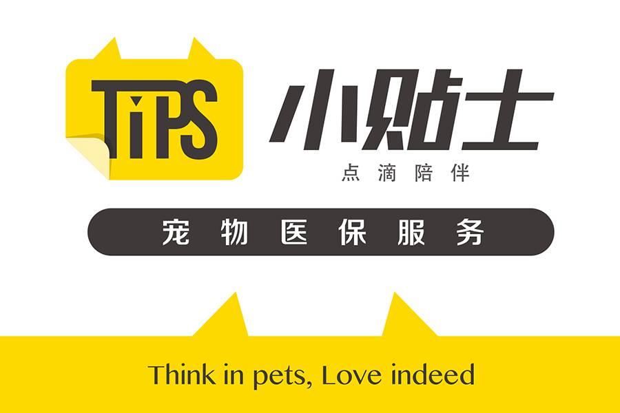 """首发丨""""小贴士Tips"""" 获数百万元融资,做宠物的健康管理平台"""