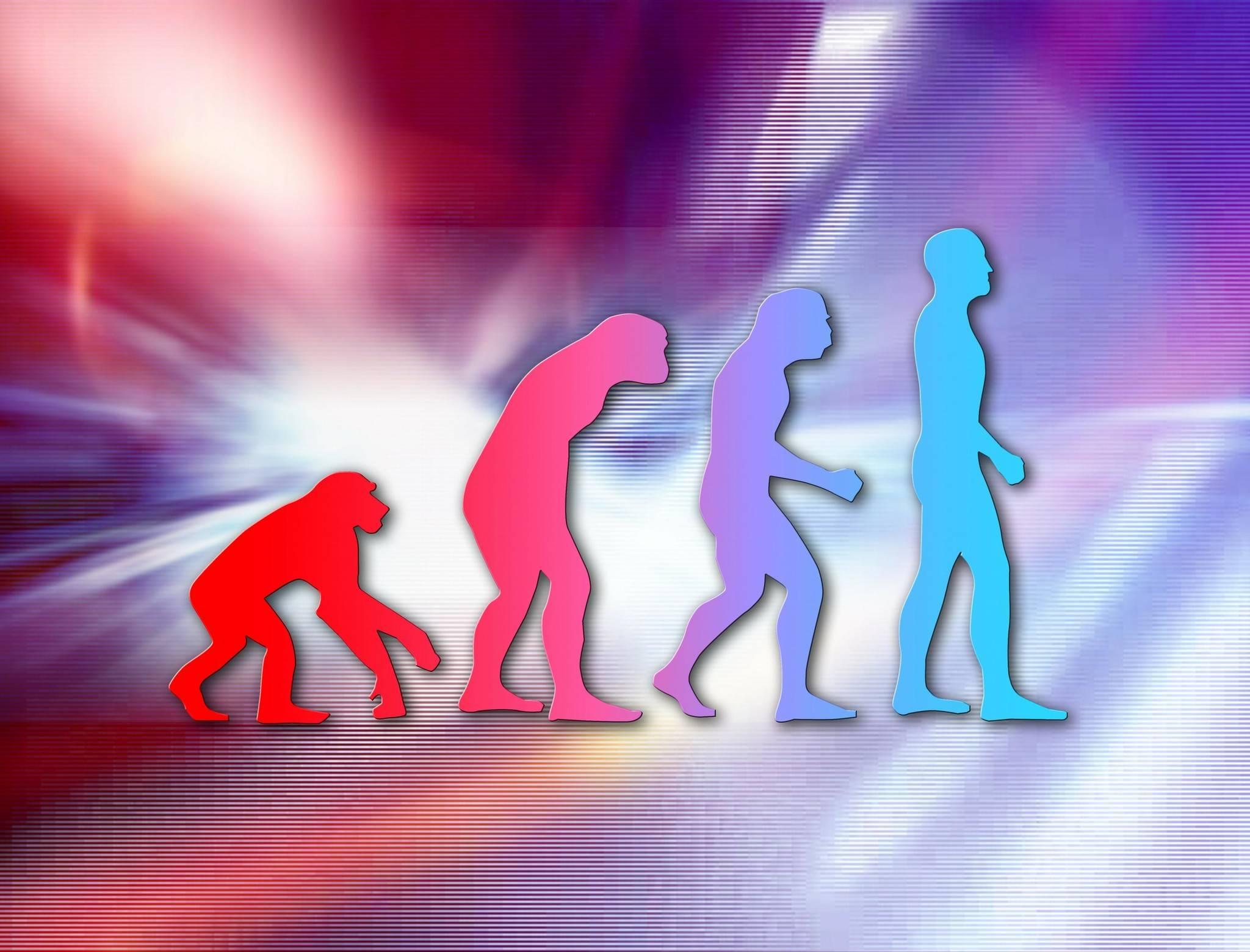 50年进化路径,软件服务行业的老中青三代