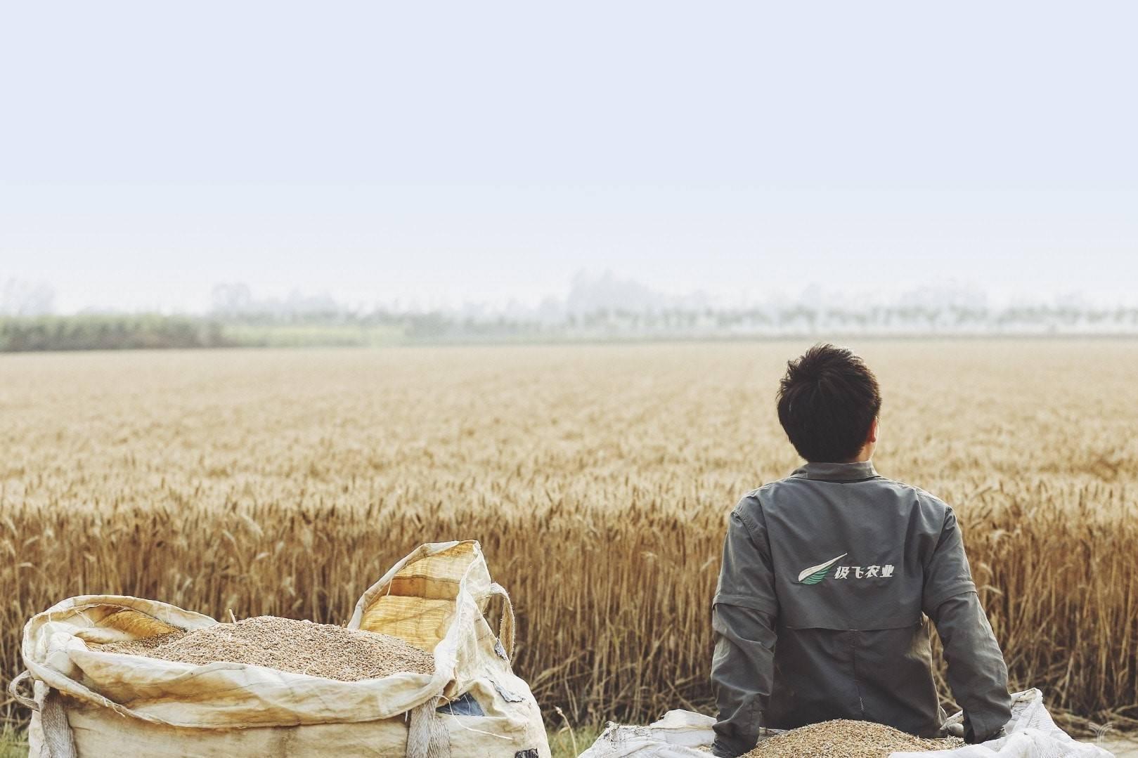 """专访丨极飞科技龚槚钦:无人机AI解决方案让农业""""无人化"""""""