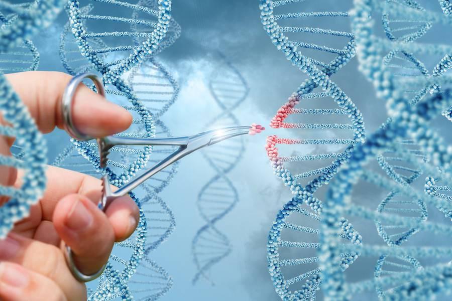基因疗法,基因疗法,遗传病,脊髓性肌肉萎缩,免疫反应,地中海贫血