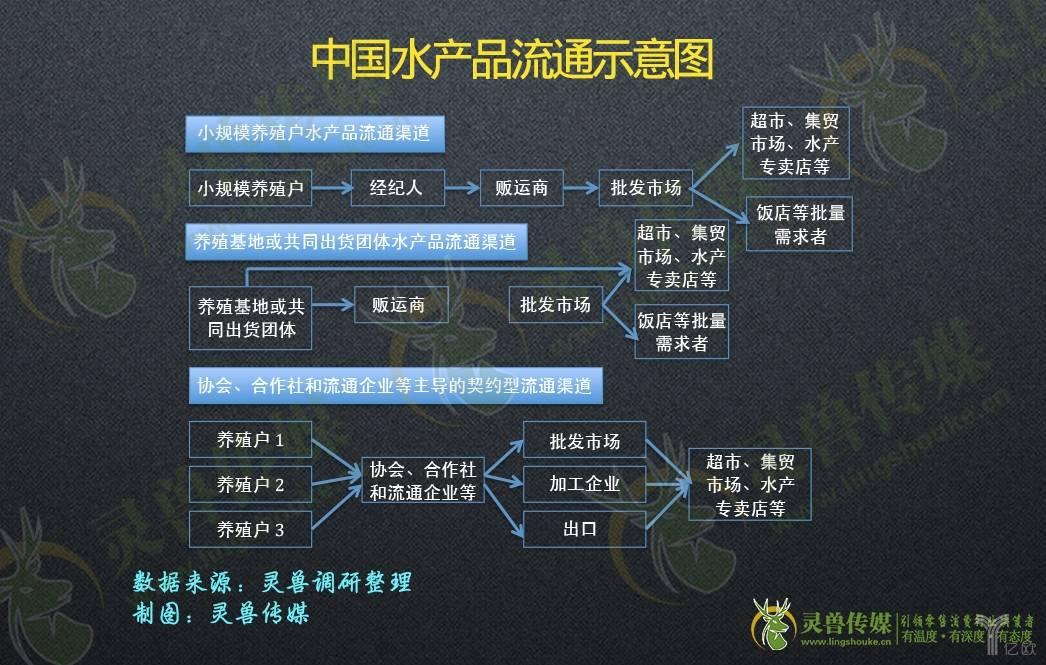 中国水产品流通示意图