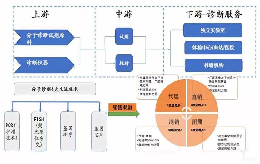 亿欧智库:分子诊断的产业链