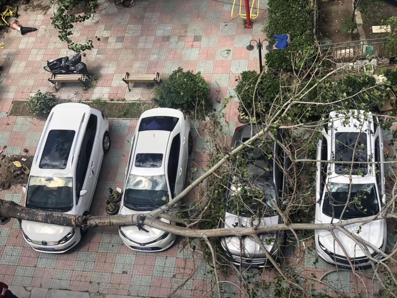 车辆遭遇意外损害