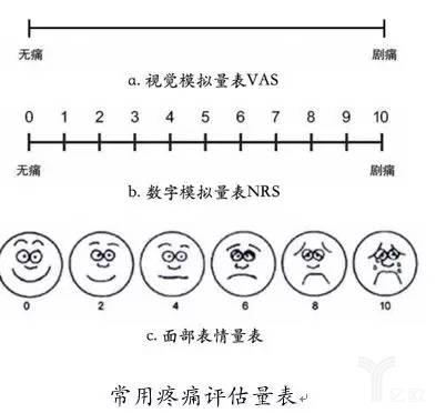 常用疼痛评估量表
