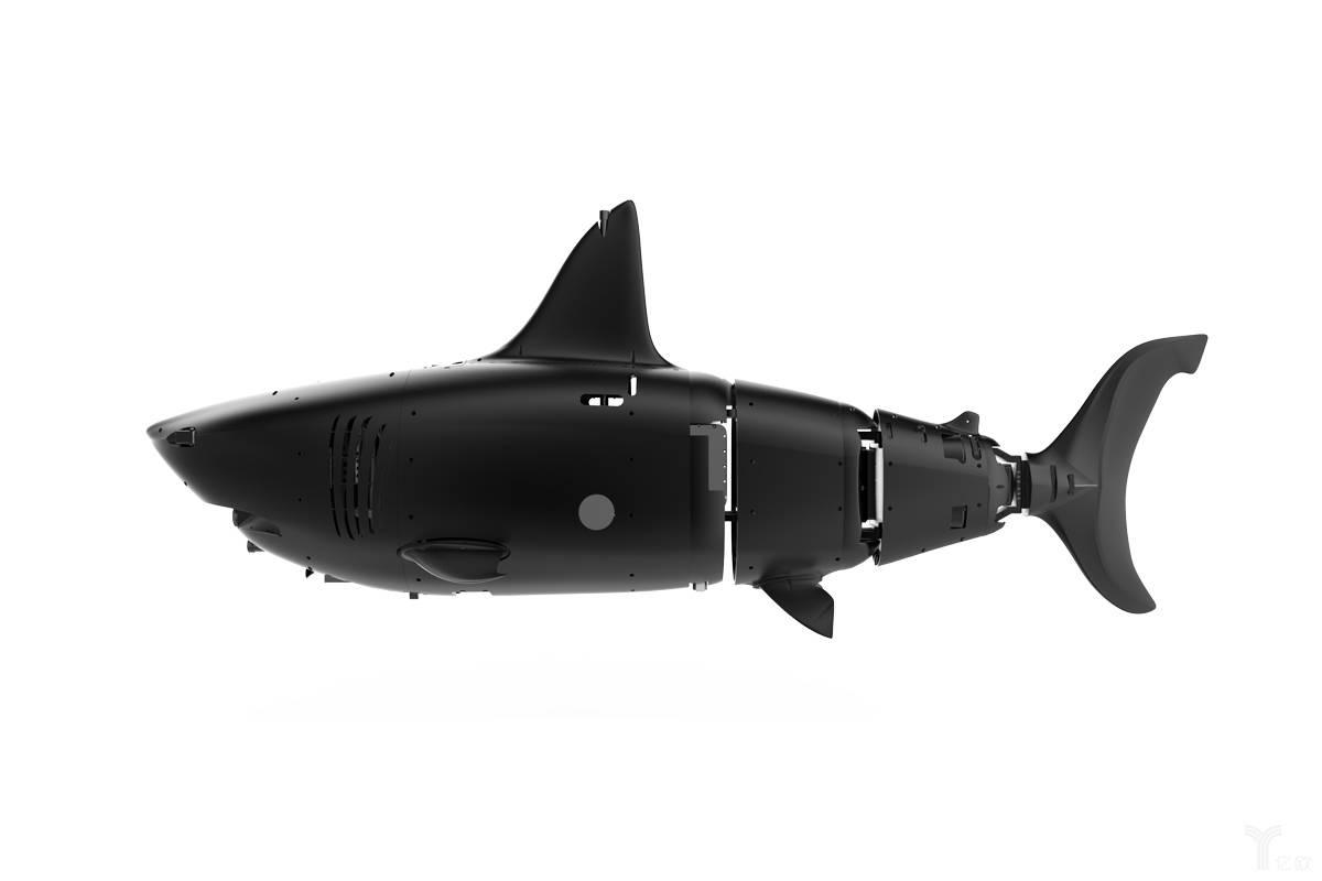 ROBO-SHARK.jpg