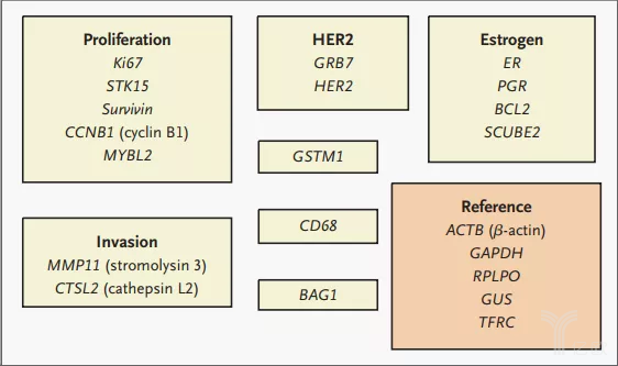 亿欧智库:RT-PCR试验测试所需的21个基因