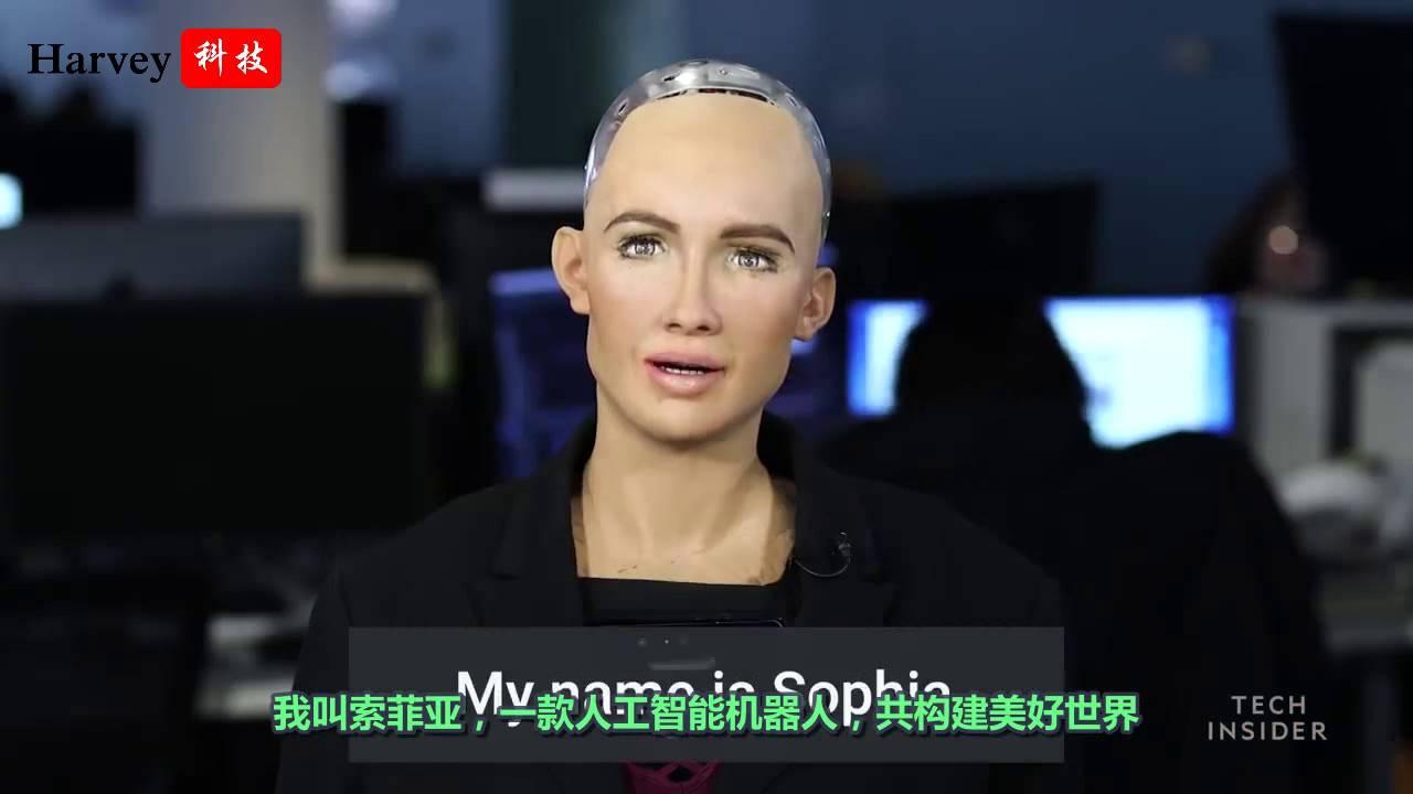 """世界上首款机器人公民""""索菲亚"""""""