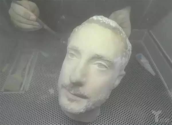 3D打印头型.jpg