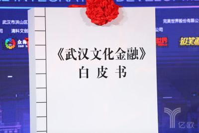 武汉市文化与金融白皮书
