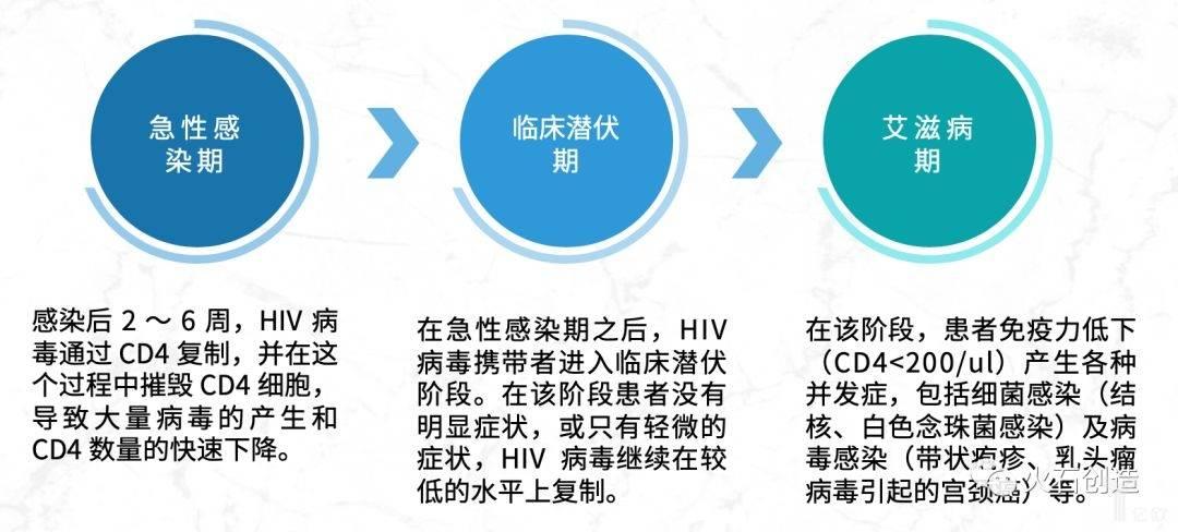 图1 艾滋病感染期暗示图.jpeg