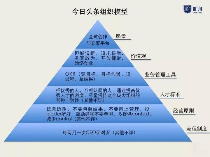 组织模型.jpg