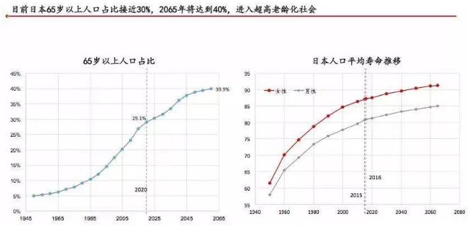 日本人口结构