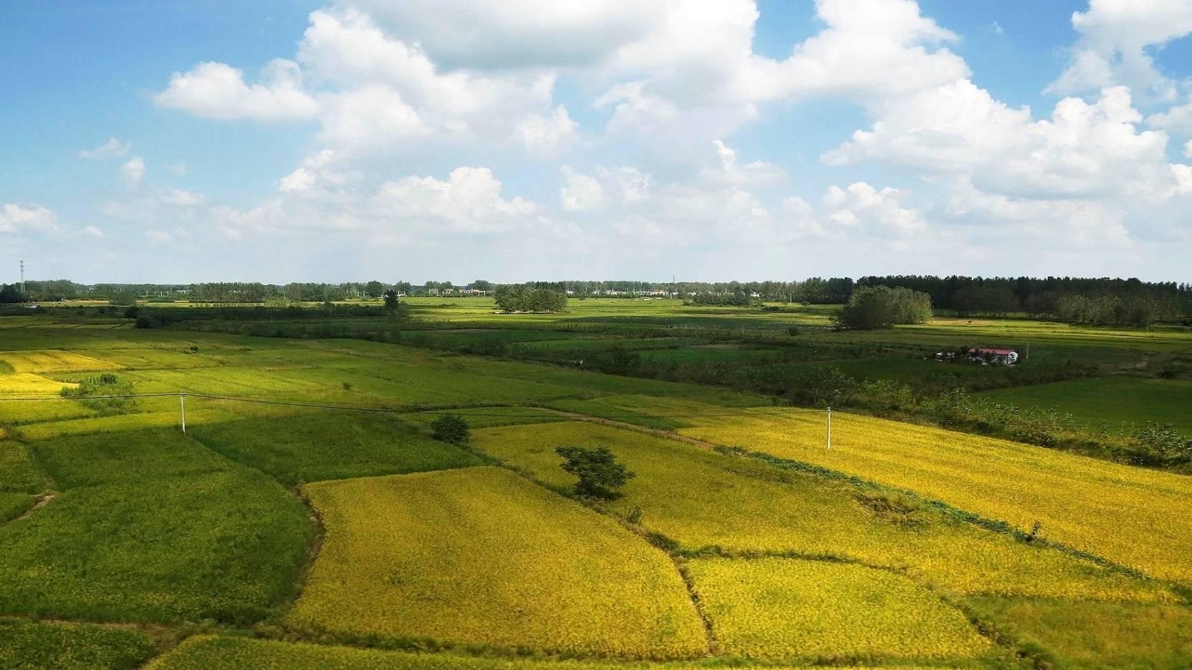农业信息科技发展研究报告——促进农业发展,推动乡村振兴